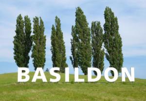 Basildon SEO
